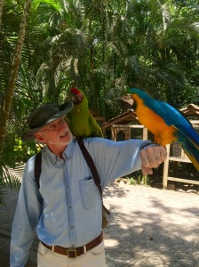 Scott with blue and green guacamayas (macaws). One of them has his eye on Scott's har.